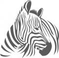 Декоративен стикер -  Животни - Зебра 2