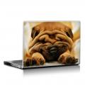 Скин за лаптоп - Кучета - 047