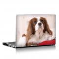 Скин за лаптоп - Кучета - 029