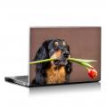 Скин за лаптоп - Кучета - 022