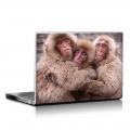 Скин за лаптоп - Маймуни - 010