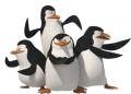 Стикери Мадагаскар - Пингвините 2-