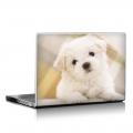 Скин за лаптоп - Кучета - 046