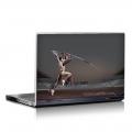 Скин за лаптоп  - Спорт -  лека атлетика 001