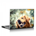 Скин за лаптоп - Кучета - 043