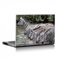 Скин за лаптоп - Животни - 015